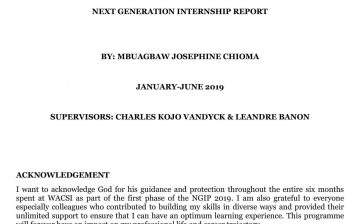 Internship Report by Mbuagbaw Chioma