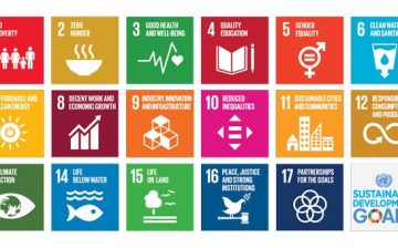 What Roles Should The Youth Play to Achieve The SDGs By 2030