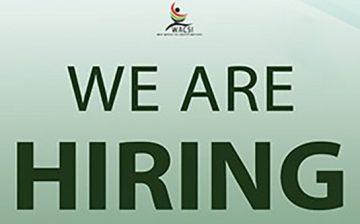 Vacancy Announcement: Digital Marketing Assistant
